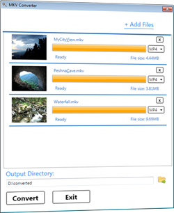 MKV to MP4 Converter Screenshot